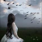 فرشته ای که برای نجاتم به زمين آمده بود، رسالتش را به نگاهی ديگر فروخت! کسی که ميخواست مرا مثل خودش آسمانی کند، حالا با کسی ديگر در اين نزديکيها زندگی ميکند من از او دلگير نيستم؛ زمين است و هوسهايش ...! فقط کمی برايش نگرانم؛ او بالهايش را.. و آسمان را فراموش کرده . - عیسی صمدی