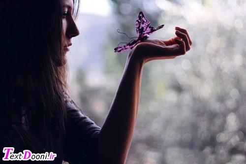 پروانه شدی