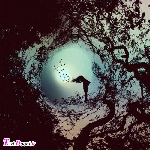 سحر دیدم درخت ارغوانی